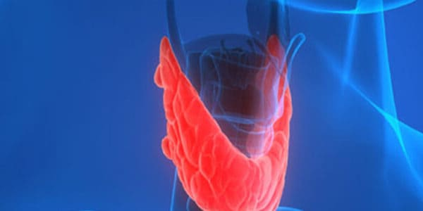 Iodine and Thyroid problems Weight Loss